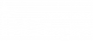 logo ins -white